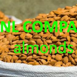 hạnh nhân được ANL chúng tôi thu mua và nhập khẩu số lượng lớn từ các quốc gia chuyên trồng và chế biến hạt hạnh nhân, hàng nông sản thô chứa trong bao tải, giá sỉ luôn tốt cho Quý khách hàng