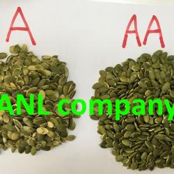 chất lượng sản phẩm nhân hạt bí xanh mà chúng tôi thu mua và nhập khẩu về Việt Nam luôn đạt tiêu chuẩn. Vì được chúng tôi kiểm tra thường xuyên.