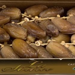 deglet nour tunisia, chà là nguyên cành loại thượng hạng