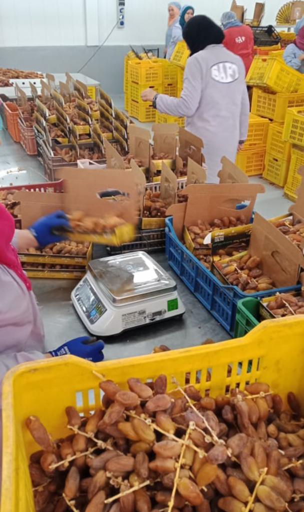 bên trong cơ sở sản xuất của nhà cung cấp chà là cho ANL chúng tôi, tại Tunisia