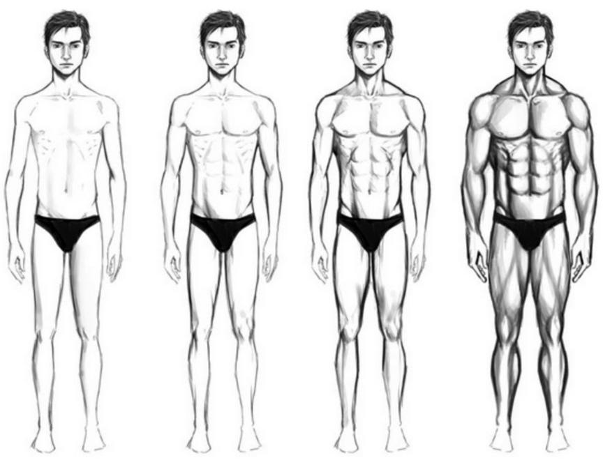yến mạch giúp tăng cân, tăng cơ. Là thực phẩm vàng đối với dân tập Gym