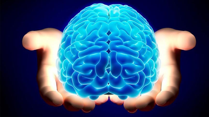 1 trong những công dụng nổi tiếng nhất của hạt óc chó là tốt cho não bộ của chúng ta